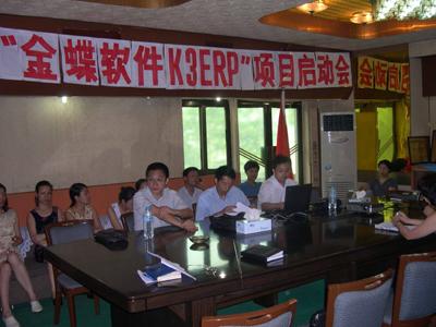 大新药业K/3 ERP项目正式启动